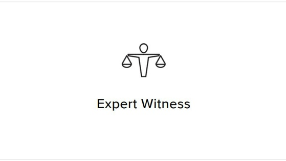 Expert Witness - Shotgun Noise